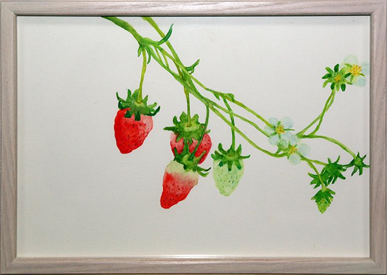 strawberry03s3.jpg